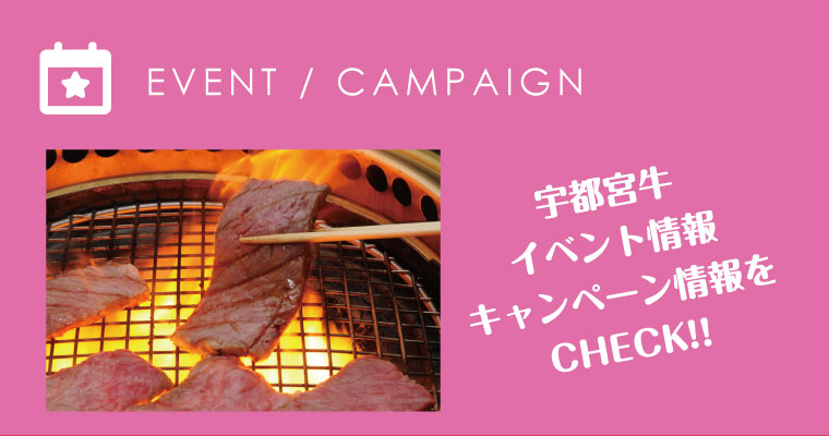 UB(宇都宮牛)最新イベント・キャンペーン